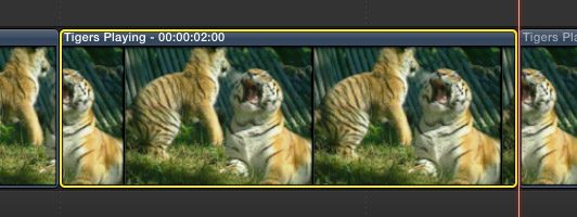 FCP X: Inserting freeze frame into the primary storyline