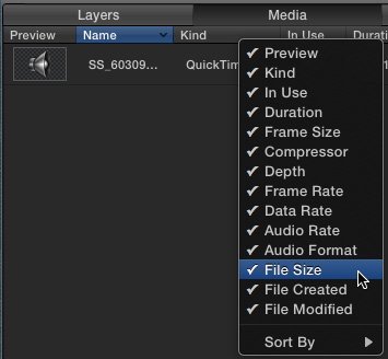 how to add audoo in premier clip
