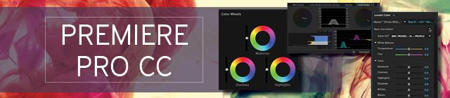 Color Correction for premiere store