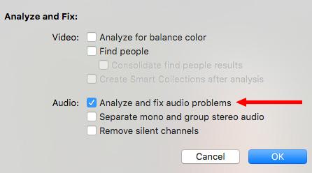 FCP X: Using Audio Enhancements | Larry Jordan