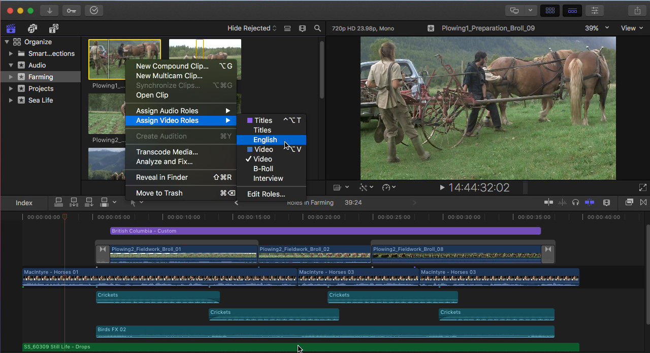 Apple Final Cut Pro X 10 4: Workflow & Editing