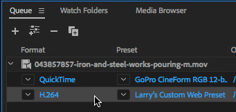 Adobe Media Encoder: Extract a Short Range from Longer Video