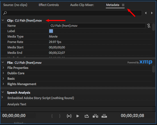 Premiere Pro CC: Create and Use Search Bins   Larry Jordan
